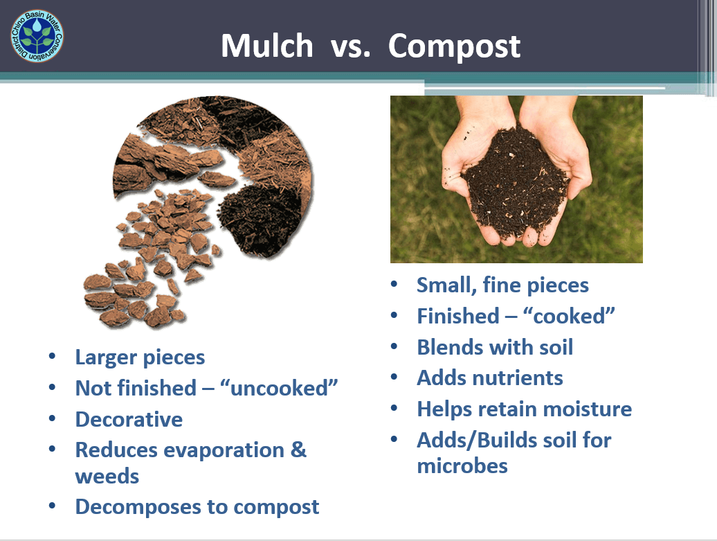 Mulch vs Compost