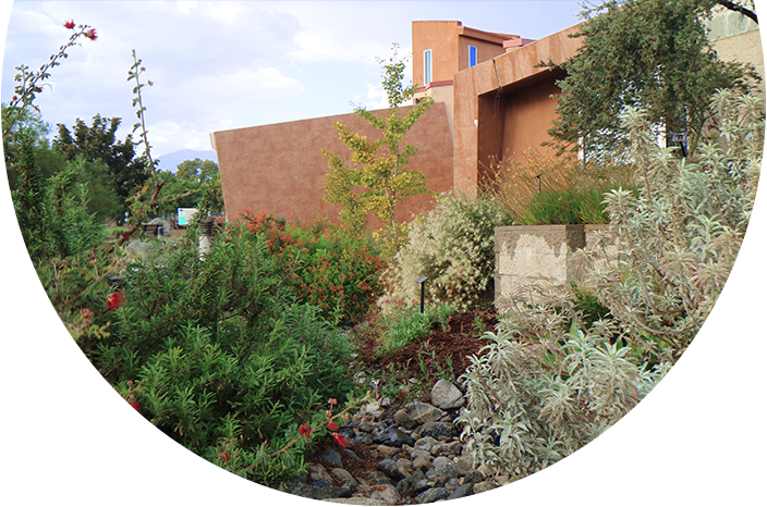 CBWCD Waterwise Community Center exterior landscaping
