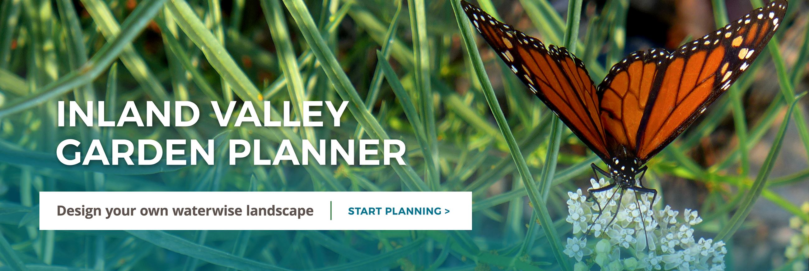 Inland Valley Garden Planner. A visioning tool for beautiful landscapes. Start Planning