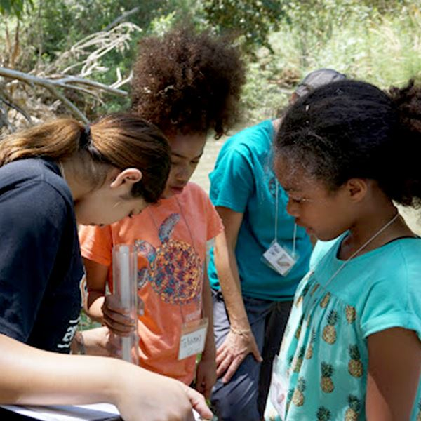 Students participate in a summer camp activity